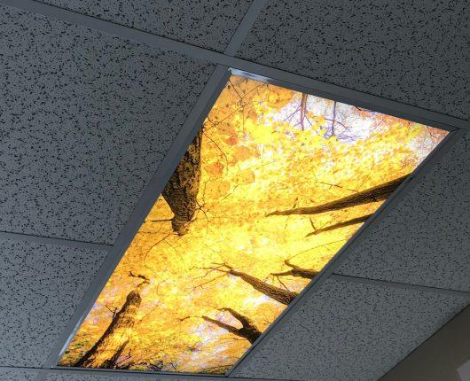 Ceiling VB
